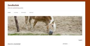 zandkoliek, zand eten, paard eet zand, paardenziekte, koliek