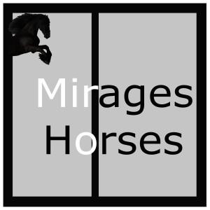 paarden, paarden trainen, paarden keuren, jonge paarden, friezen, friese paarden, friese paarden te koop