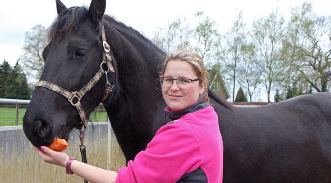 Vrouwkje-Blog deel 1: Beginnen met een groen paard
